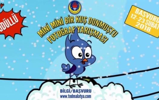 """""""MİNİ MİNİ BİR KUŞ DONMUŞTU"""" Yarışmasının Sonuçları Açıklandı!(The Results of the """"Mini Mini Bir Kuş Donmuştu"""" Contest were Announced!)"""